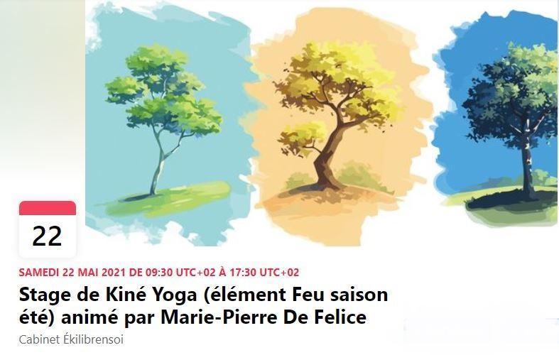 Stage Kiné Yoga